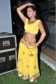 Shreya Vyas @ Eedorakam Aadorakam Movie Audio Launch Stills