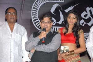 Ekaveera Movie Audio Release Pics