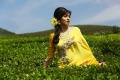 Actress Sada in Eli Movie Photos