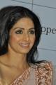 Actress Sridevi at English Vinglish Tamil Trailer Launch Stills