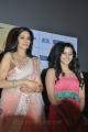 Sridevi, Priya Anand at English Vinglish Tamil Movie Trailer Launch Stills