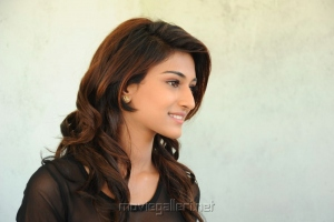 Telugu Actress Erika Fernandez Stills