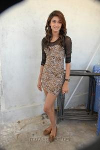Erika Fernandez Hot Stills at Dega Movie Press Meet