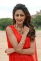 Telugu Actress Erika Fernandez Latest Stills