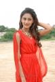 Telugu Actress Erika Fernandez  in Red Dress Stills