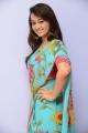 Esther Noronha Saree Stills @ Veyyi Abaddalu Success Meet