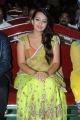 Ester Noronha Hot Photos at Bheemavaram Bullodu Audio Release