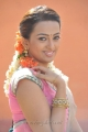 Actress Ester Noronha Hot in Saree Images in 1000 Abaddalu