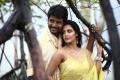 Sivakarthikeyan, Priya Anand Hot in Ethir Neechal Movie Photos