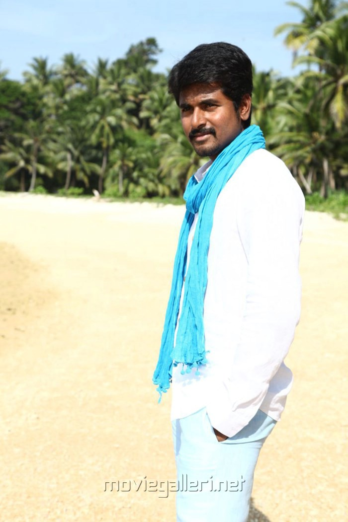 Picture 465285 | Actor Sivakarthikeyan in Ethir Neechal ...