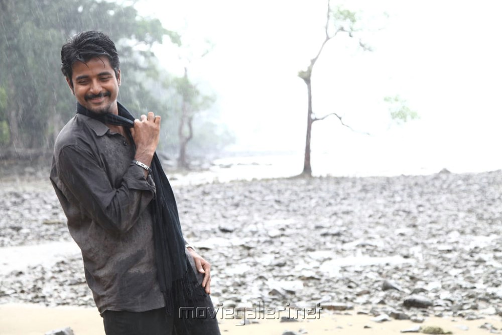 Picture 465294 | Actor Sivakarthikeyan in Ethir Neechal ...