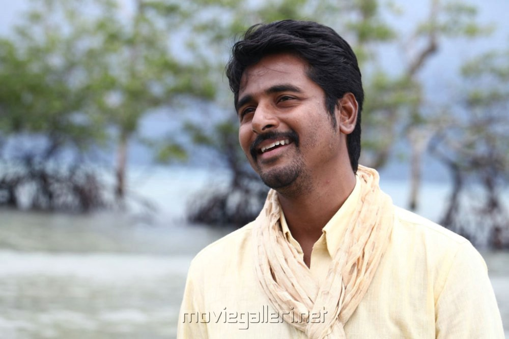 Picture 465295   Actor Sivakarthikeyan in Ethir Neechal ...