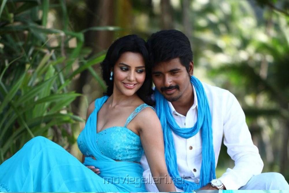 Picture 465296 | Priya Anand, Sivakarthikeyan in Ethir ...