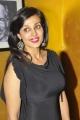 Telugu Actress Flora Saini in Black Dress Latest Photos