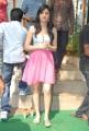 Actress Richa Panai at Full House Entertainment Pro No 1 Movie Launch Photos