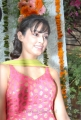Disha Pandey at Full House Entertainment Pro No 1 Movie Launch Photos
