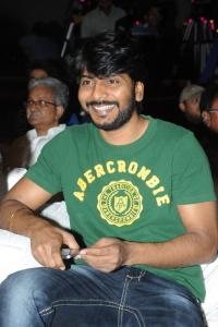 Sampath Nandi @ Gaalipatam Movie Audio Launch Stills