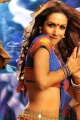 Gabbar Singh Item Song Heroine Malaika Arora Hot Stills