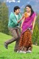 Pawan Kalyan Shruti Hassan in Gabbar Singh New Stills