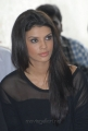 DCM Item Girl Gabriela Bertante Latest Stills