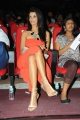Gabriela Bertante in Shoulder-less Dress at DCM Audio Release