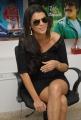 Gabriela Bertante Latest Stills at DCM Press Meet