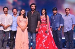 Gaddala Konda Ganesh Movie Success Meet at Vizag Photos