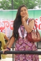 Actress Prakruti in Gaja Donga Movie Stills