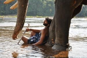 Actor Vikram Prabhu in Gajaraju Movie Stills