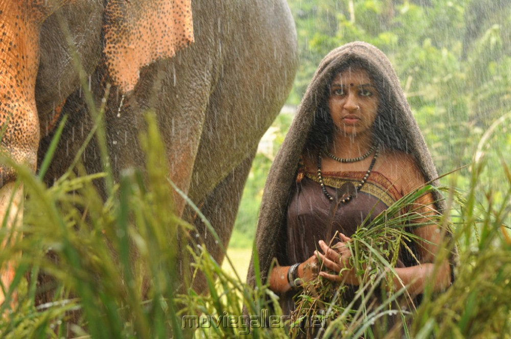 Actress Lakshmi Menon in Gajaraju Telugu Movie Stills