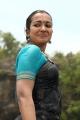 Heroine Catherine Tresa in Gajendrudu Movie Stills