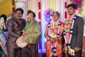 Gana Ulaganathan Daughter Wedding Reception Photos