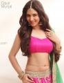 Tamil Actress Gauri Munjal Hot Photoshoot Stills