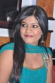 Actress Gauri Nambiar at Sembattai Movie Press Meet