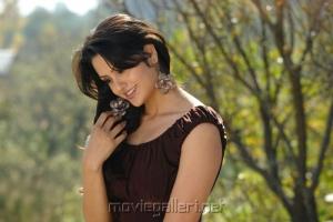 Gauri Sharma at Kullu Manali Movie