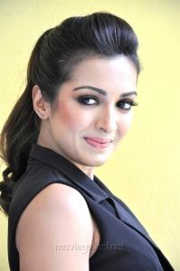 Goutham Nanda Actress Catherine Tresa Interview Photos