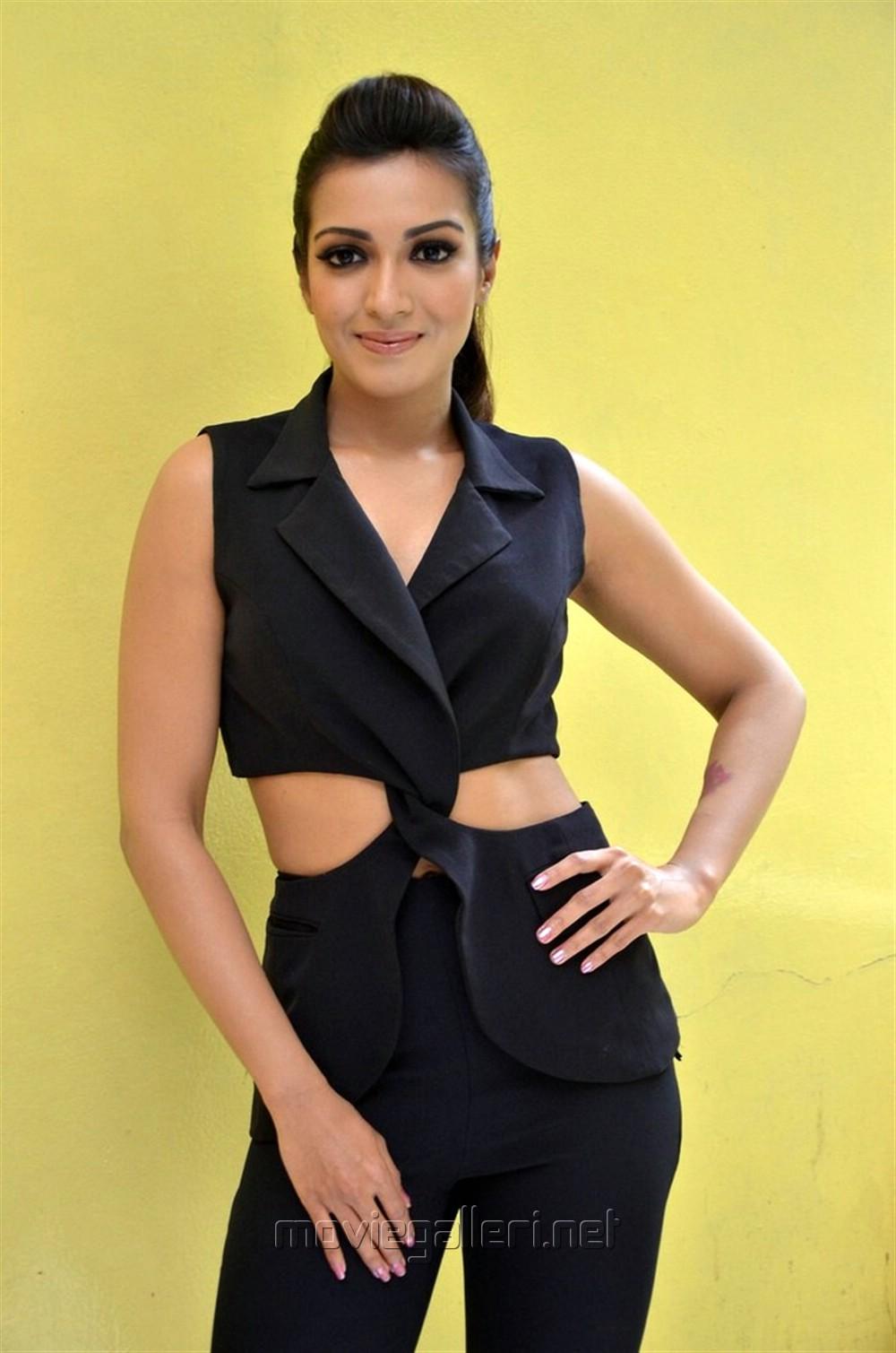 Gautham Nanda Actress Catherine Tresa Interview Photos