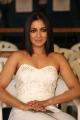 Actress Catherine Tresa @ Gautham Nanda Movie Teaser Launch Stills