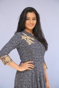 Actress Gayathrie Shankar Hot Images in Long Dress