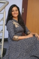Actress Gayathrie Shankar Images in Grey Long Dress