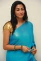 Gayatri Iyer Hot in Blue Saree Stills