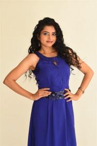 Actress Gayatri Rema Photos @ Pranavam Movie Press Meet