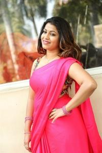 Actress Geethanjali Pink Saree Hot Images