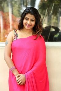Actress Geethanjali Thasya Hot Images in Pink Saree