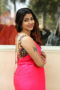 Actress Geethanjali Thasya Hot in Pink Saree Images