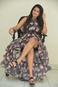 Actress Rashi Singh Pictures @ Gem Release Date Press Meet