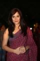 Anasuya Bharadwaj @ Gemini TV Puraskaralu 2016 Red Carpet Stills