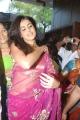 Genelia Hot Transparent Saree