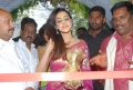 Actress Genelia in Hot Transparent Saree