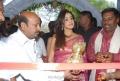 Actress Genelia in Hot Transparent Saree